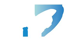 PREXION-Logo
